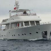 Versuch auf See lockt Delfinschwarm an